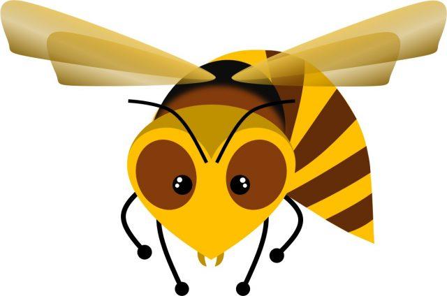 子供が蜂に刺されたらショック症状が起こる前に受診を